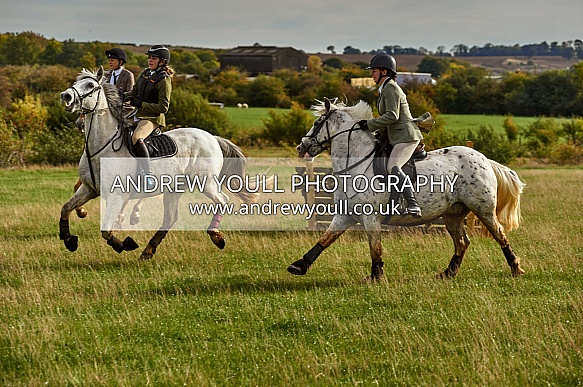 Yorkshire Farmers Bloodhounds - Hound Exercise Scunthorpe - 07OCT2018