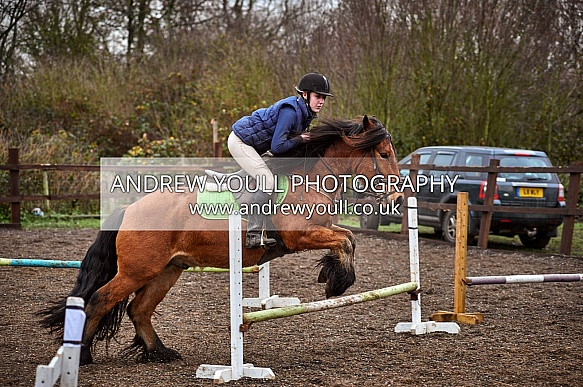 Orchard Equestrian - 25NOV2018 - Nervous & Novice Show Jumping