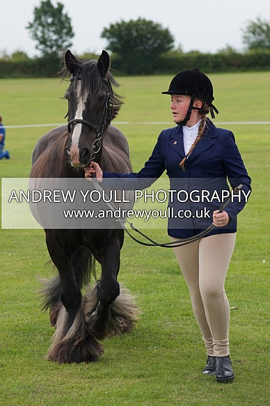 SDPOC - 26 JUL 2015 - Show Jumping & Showing