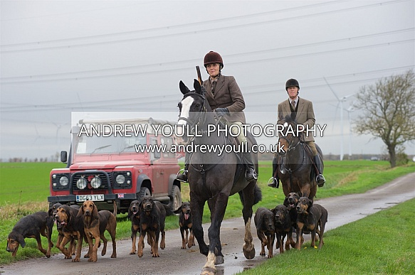 Yorkshire Farmers Bloodhounds - Hound Exercise - 15NOV2015