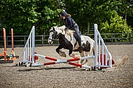 Yorkshire Farmer Bloodhounds - 25MAY2019 - Showcross