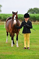 SDPOC - 28AUG2016 - Show Jumping & Showing