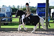 Rainbow Shows - 25SEP2016 -  Mill Lane, Brayton: Yorkshire Horse of the Year Championships