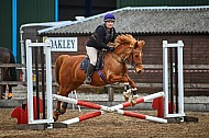 Yorkshire Farmer Bloodhounds - 28APR2019 - Showcross