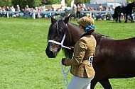 Great Yorkshire Show 2015