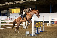 ADRC - 12NOV2016 - Moorhouse EC: Members Show Jumping Class 5