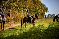 Ackworth and District Riding Club - 27OCT2019 - Guided Ride: Stapleton