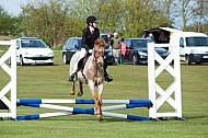 SDPOC - 01MAY2016 - Show Jumping & Showing