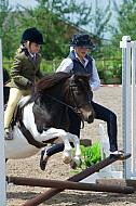 Rainbow Shows - 18JUN2016 -  Oakley Equestrian Centre, Crowle: Working Hunter