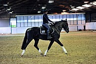 ADRC - 14OCT2016 - Moorhouse EC: Stressless Dressage