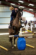 Lisa Smith Eventing - XC Clinic - 30JAN2015: Class 06